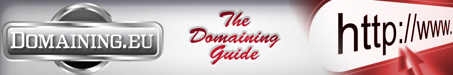 domaining.eu - domain guide